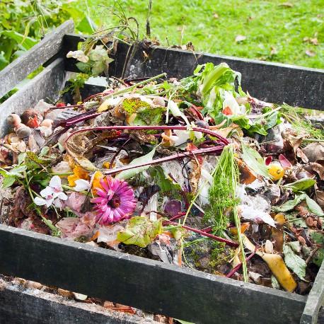 Mon compost